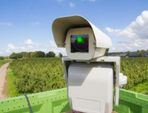 Laser tech keeps wild birds clear of crops