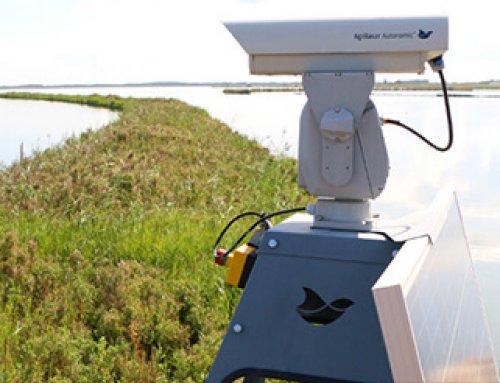Hoogheemraadschap Hollands Noorderkwartier verjagen ganzen met laser