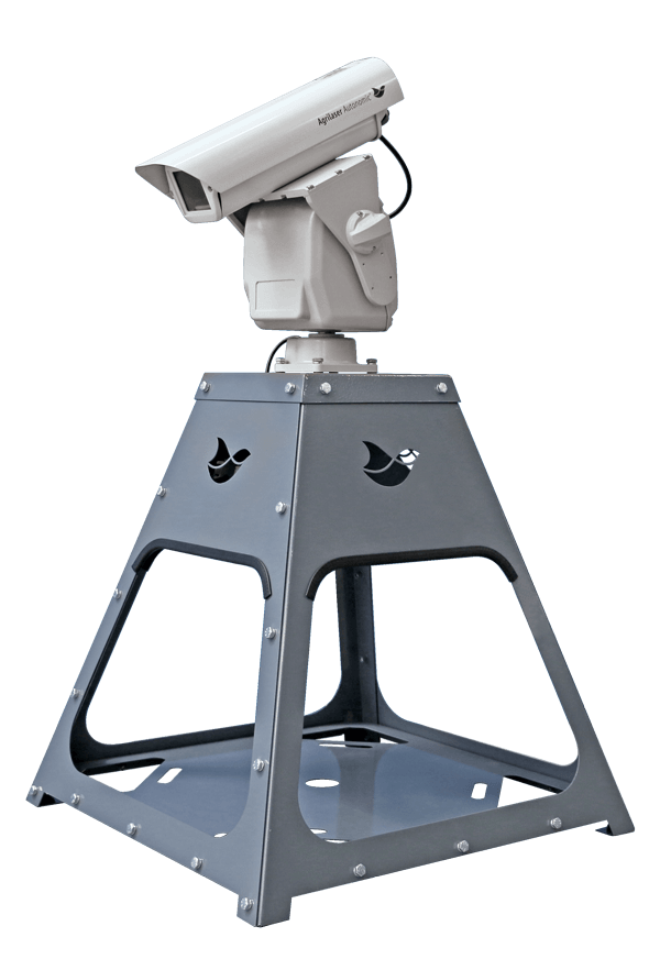 Automated bird deterrent laser