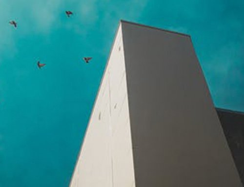 Bird Control Lasers are Used on Rooftops by Facility Managers
