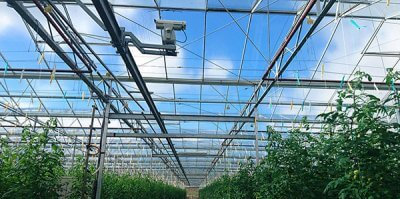 Bird Dispersal Laser Helps Greenhouse Owners Prevent Bird Damage